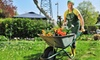 Amber Gardens - Stow: $15 for $30 Worth of Gardening Supplies at Amber Gardens in Stow