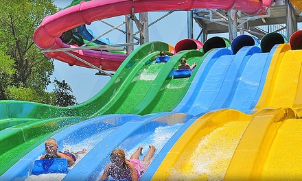 Water Park Season Passes with Guest Passes and Coupons for One, Two, or Four at Hawaiian Falls (77% Off)
