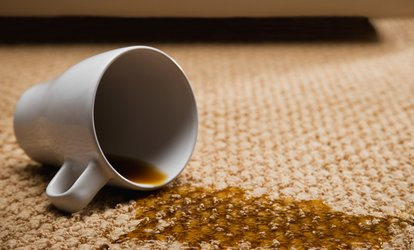image for Two, Three, Four, or Six Rooms of Steam Carpet Cleaning from USA Carpet Cleaning (Up to 61% Off)