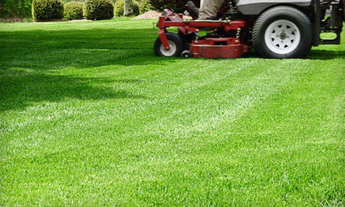 Deese Lawn and Home Service LLC - Raleigh / Durham: 4, 8, or 12 Consecutive Weeks of Lawn-Care Services from Deese Lawn and Home Services LLC (Up to 72% Off)
