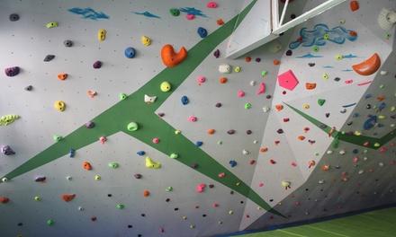 Bautismo de escalada para una o dos personas desde 19,95 € en Boulder Madrid