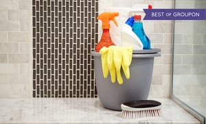 EcOrganiClean: Two, Four, or Six Hours of Deep Cleaning and Organizing from EcOrganiClean (Up to 55% Off)