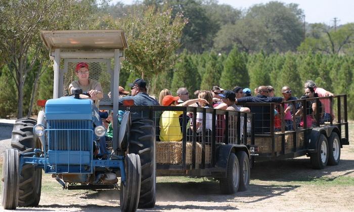 Devine Acres Farm - Devine-Natalia: $9 for a Spring Visit at Devine Acres Farm ($16 Value)