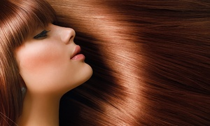 House of Hair Salon & Spa: Keratin Treatment or All-Over Color and Deep-Conditioning Treatment at House of Hair Salon & Spa (Up to 50% Off)