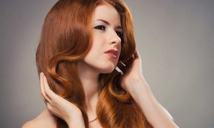 The Vineyard Salon  - Kala Doremus: Cut and Blowout Style with Optional Highlights or Color from Kala Doremus at The Vineyard Salon (Up to 51% Off)