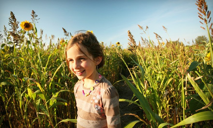 Hentze Family Farm - Junction City: Corn Maze and Pumpkin Walk for 2, 4, or 10 at Hentze Family Farm (Up to 60% Off)