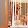 Extra-Tall Walk-Through Gate with Small Pet Door