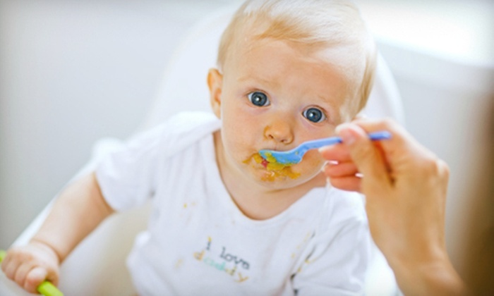 Jazzy Bites - Highland Hill: Two-Hour In-Home Baby-Food-Cooking Class for One or Up to Six from Jazzy Bites (Up to 51% Off)