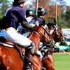 Houston Polo Club — Up to 45% Off Sunday Polo Match