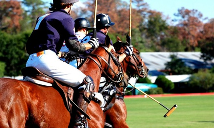 $33 for a Polo Match for Two on Any Sunday Between April 27 and June 15 at Houston Polo Club (Up to $60 Value)