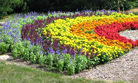 Visit for Two Adults and Two Kids or Four Adults and Four Kids to Klehm Arboretum (Up to 52%Off)