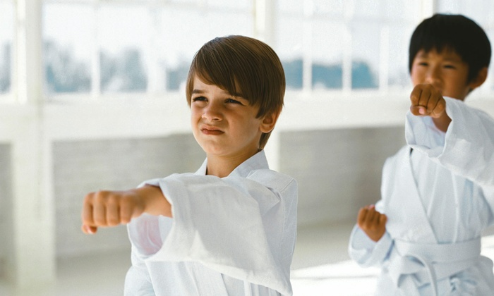 West Cobb Martial Arts - Acworth-Kennesaw: One Month of Unlimited Goju-Ryu Karate Classes for One Child or One or Two Adults at West Cobb Martial Arts (Half Off)