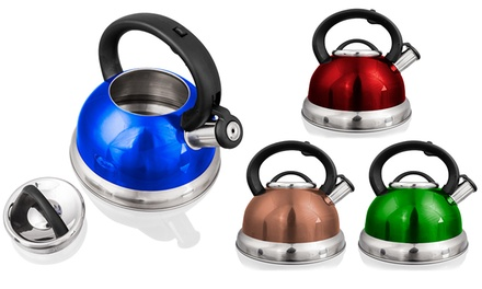 Stainless Steel 2.8L Tea Kettle