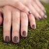 Up to Half Off Herbal Mani-Pedis or Gel Manicures