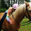 Up to 56% Off  Horseback-Riding