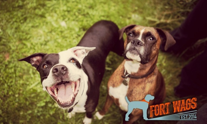 Fort Wags - Central Beaverton: $74 for $150 Worth of 5 days of doggy day care at Fort Wags