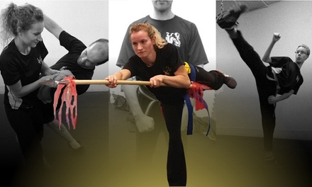 Up to 58% Off martial arts classes at Shaolin Dragon Kenpo School