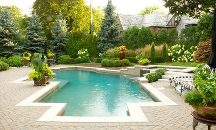 Four Weekly Full-Service Pool Cleanings at Sparkling clear pool care (60% Off)