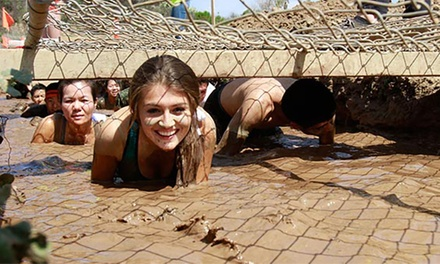 Race Entry for One or Two to the Irvine Lake Mud Run - Summer of Mud on Saturday, June 20 (Up to 38% Off)
