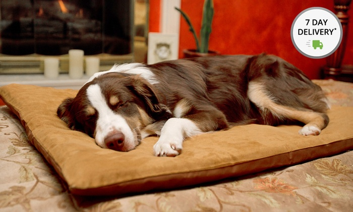 Memory Foam Suede Pet Beds: Memory Foam Suede Pet Beds. Multiple Colors. Free Shipping and Returns.