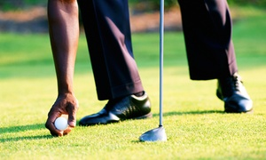 Golf Etc. Avon: $49 for a Golf-Driver Fitting at Golf Etc. Avon ($100 Value)