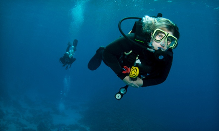 Adventures in Scuba - Willow Park: 2.5-Hour Discover Scuba Diving Course for One or Two at Adventures in Scuba (Up to 53% Off)