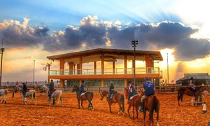 Royal Equestrian Club: One or Four Horse Riding Lessons at Royal Equestrian Club Dubai