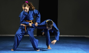 Barrett Hapkido: 10-Class Pass or One Month of Unlimited Martial Arts Classes at Barrett Hapkido (Up to 74% Off)