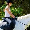 Up to $ Off Horseback-Riding Lessons