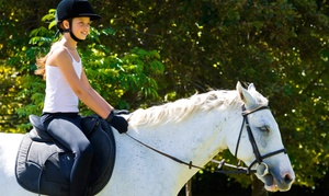 Stone River Farms: One-Day Summer Camp, or Three Horseback-Riding Lessons for One or Two at Stone River Farms (Up to 63% Off)