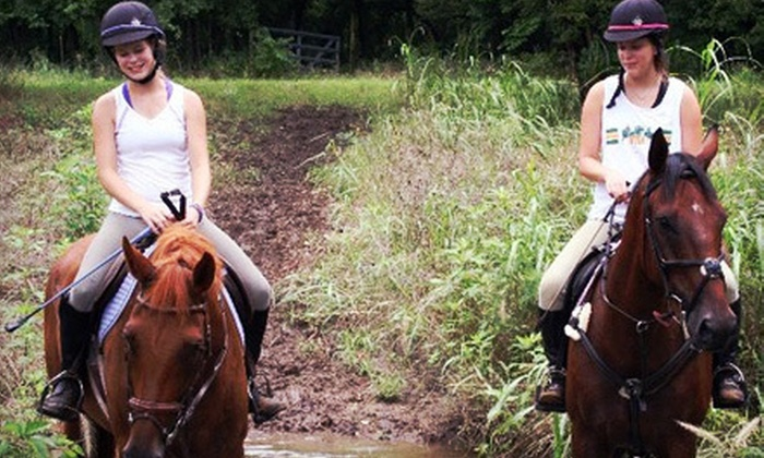 Deer Creek Stables - Burleson: One Beginner or Two Advanced Horseback-Riding Lessons at Deer Creek Stables (Up to 62% Off)