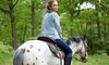 JMG Ranch - Tigerville: One-Hour Trail Ride for Two or Four at JMG Ranch (Up to 48% Off). Four Options Available.