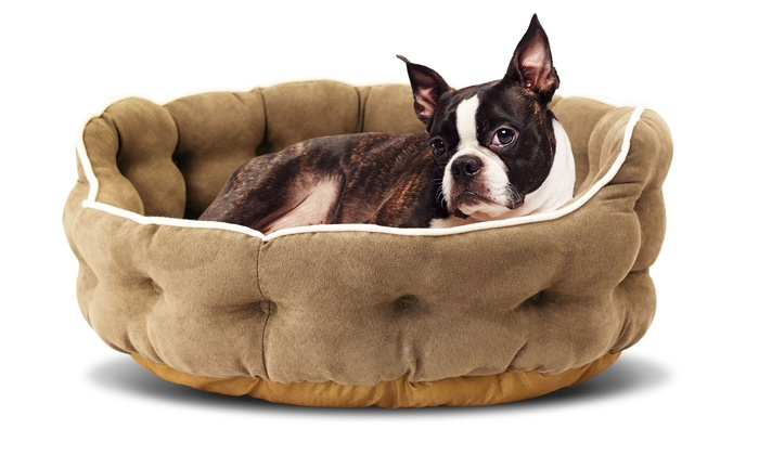 Up To 53 Off On Micro Suede Mini Tufted Pet Bed Groupon