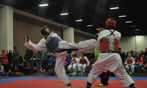 Noravong Sport Taekwondo: $95 for $250 Worth of Martial-Arts Lessons — Noravong Sport Taekwondo