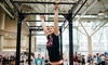 Toronto Fitness Challenge - Metro Toronto Convention Centre: One- or Two-Day Unlimited Passes for One or Two People to the Toronto Fitness Challenge June 6–7 (Up to 36% Off)