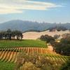 Stay at 4-Star Vino Bello Resort in Napa Valley, CA