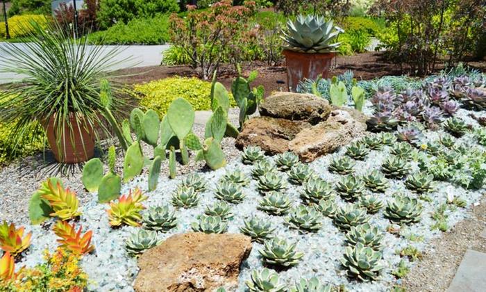 Tower Hill Botanic Garden - Boylston: Visit for Two or Four to Tower Hill Botanic Garden (Up to 50% Off)