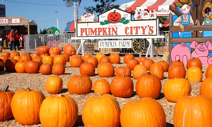 Pumpkin City's Pumpkin Farm - Pumpkin City's Pumpkin Farm : $34 for Fun Pass with Rides, Petting Zoo & Pumpkin Credit at Pumpkin City's Pumpkin Farm (Up to $65 Value)