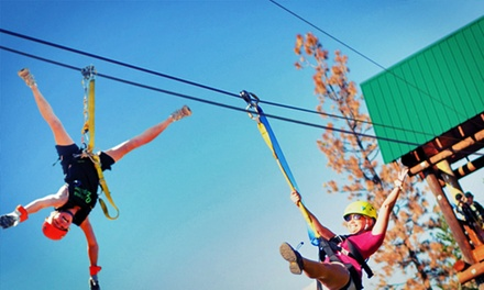 Three-Hour All-Inclusive Ziplining Adventure for Two or Four at Oyama Zipline Forest Adventure (Up to 39% Off)