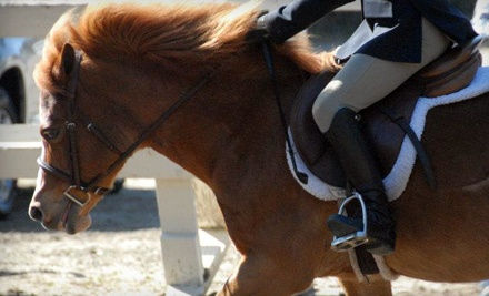 1 Private 1-Hour Horse-Riding Lesson (a $100 value) - California Riding Academy in Menlo Park