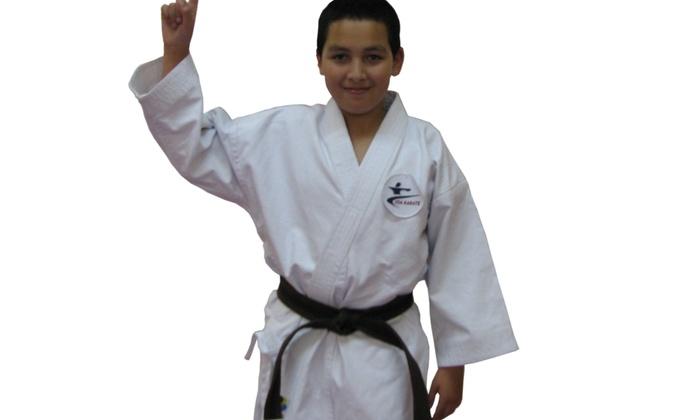 Bushido Academy of Karate Do - North Naples: Up to 62% Off Martial Arts Classes at Bushido Academy of Karate Do