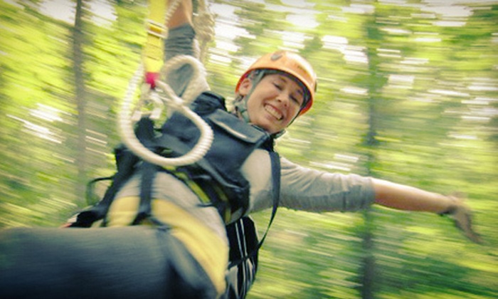 ZipZone - ZipZone Canopy Tours: Zipline Tour for Two, Four, or Six at ZipZone (Up to 55% Off)