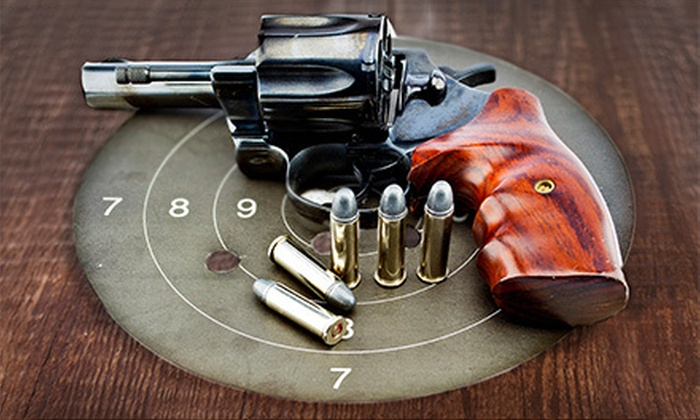 Colorado Handgun Shooting School - Englewood: Concealed-Handgun or NRA Pistol-Shooting Course for One or Two from Colorado Handgun Shooting School (Up to 56% Off)