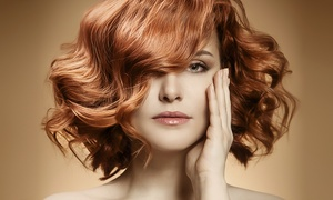 Salon 421: Haircut, Color, or Highlights Package at Salon 421 (Up to 64% Off)
