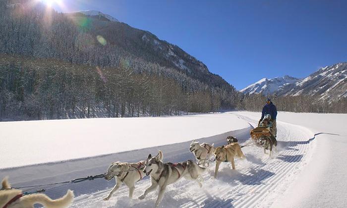 Krabloonik Restaurant and Dog Sledding - Snowmass Village: Dog-Sledding Ride with Backcountry Lunch or Dinner for Two at Krabloonik Restaurant and Dog Sledding (37% Off)