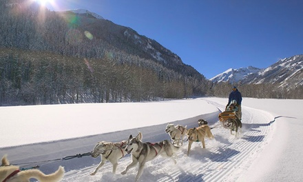 Dog-Sledding Ride with Backcountry Lunch or Dinner for Two at Krabloonik Restaurant and Dog Sledding (40% Off)