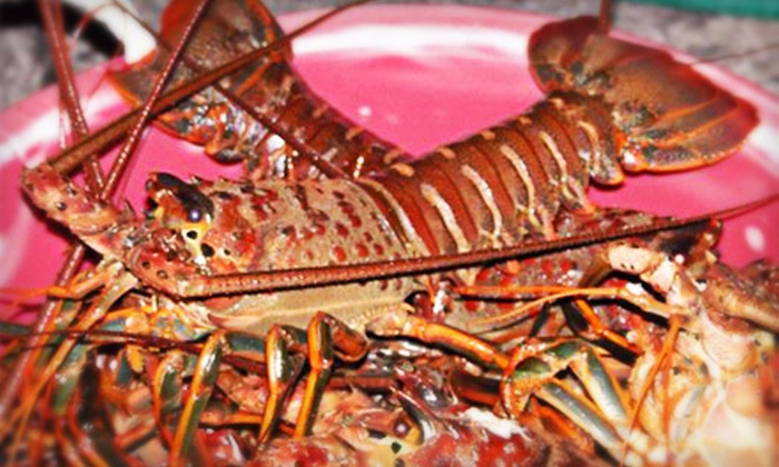Hook's Landing - Hollywood: $40 for a Six-Hour Lobster-Fishing Trip from Hook's Landing (Up to $95 Value)