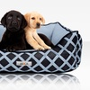 $13.99 for an ASPCA Orthopedic Pet Bed