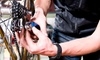 Bicycle Ranch - Bicycle Ranch: $40 for an Expanded Bike Tune-Up at Bicycle Ranch ($80 Value)