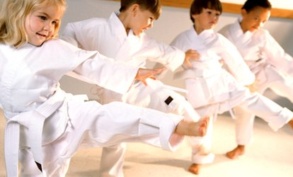 Up to 59% Off at WhirlWin Martial Arts